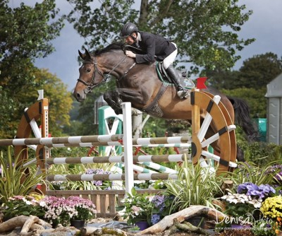 Tholm Keane Equine Nutriton Solutions and Supplements